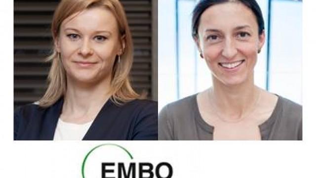 Miniony rok pod znakiem stypendiów EMBO!